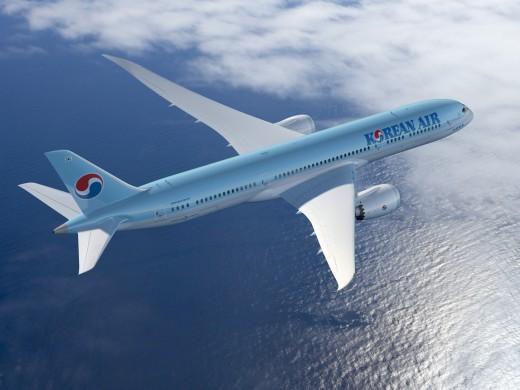 대한항공이 여름 휴가철을 맞아 해외로 떠나는 승객들의 안전한 비행을 위한 안전 수칙을 소개했다. ⓒ대한항공