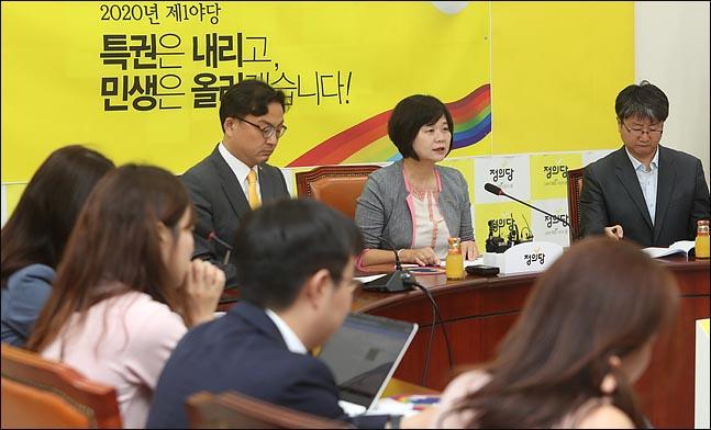 이정미 정의당 대표가 12일 오전 국회에서 취임 1주년 기자회견을 하고 있다.(자료사진) ⓒ데일리안 박항구 기자