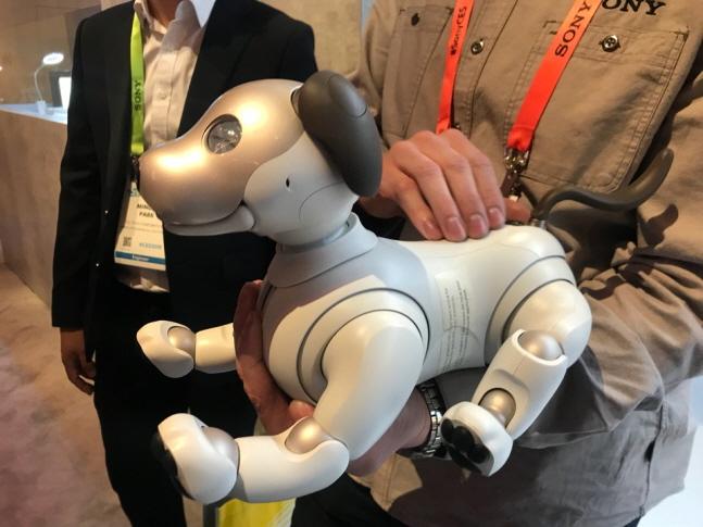 소니의 애완용 로봇