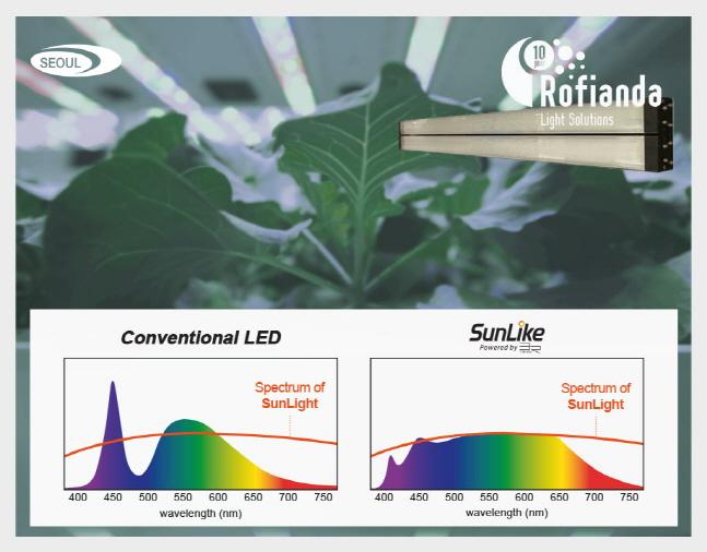 서울반도체 자연광 LED 썬라이크와 기존 제품 비교.ⓒ서울반도체