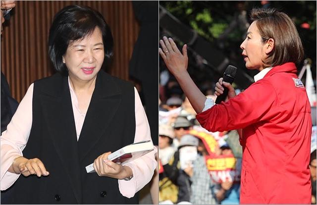 나경원 자유한국당 원내대표(오른쪽)와 손혜원 무소속 의원 ⓒ데일리안