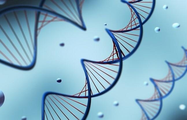 만성·난치성 질환에 효과가 좋은 천연물 의약품 개발이 활발하게 이뤄지고 있다. ⓒ게티이미지뱅크