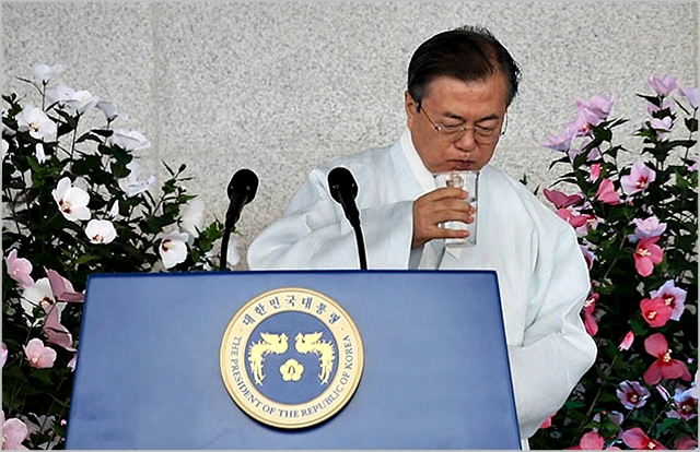 문재인 대통령이 지난 15일 독립기념관에서 열린