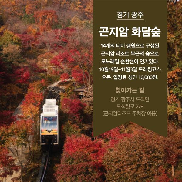 ⓒ제작 = 데일리안 이지희, 박진희 디자이너 & 이미지 출처 = 곤지암리조트