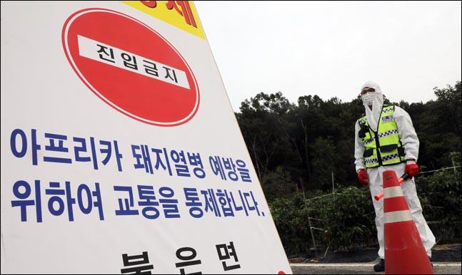 지난 9월 25일 인천 강화군 불은면에서 아프리카돼지열병(ASF) 의심 신고가 접수된 가운데 양돈농가로 향하는 도로가 통제되고 있다.(자료사진)ⓒ데일리안 박항구 기자