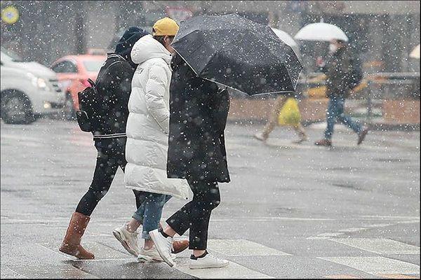 서울 중구 을지로에 시민들이 함박눈 사이로 발걸음을 옮기고 있다.(자료사진)ⓒ데일리안 류영주 기자