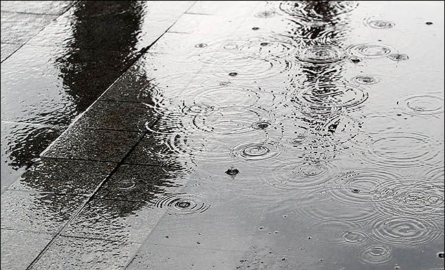 수도권 지역에 아침부터 많은 비가 내린 31일 오후 서울 종로구에 우산을 쓴 시민이 지나가는 모습이 물웅덩이에 비치고 있다.ⓒ데일리안