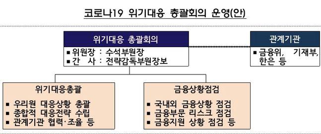코로나19 위기대응 총괄회의 운영(안)ⓒ금융감독원