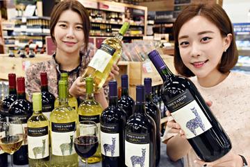 홈플러스, '빈야드 와인' 대용량 출시