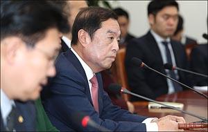 """김병준  """"손혜원, 베지 단 최순실"""""""