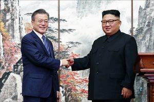 [IGO 문재인정부 2년 데일리안 여론조사] '잘한 분야' 대북관계 27.3% 복지 12.6%
