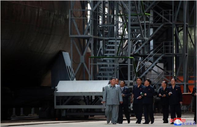 고개드는 '핵무장론'…이유있는 재등장