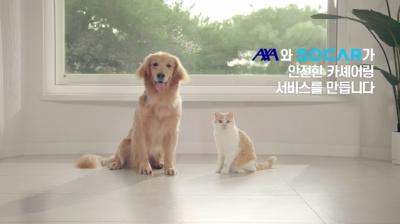 AXA손해보험, 쏘카와 '안전한 카셰어링 캠페인' 전개
