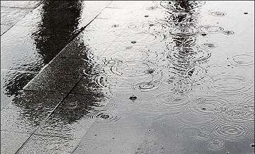 [내일날씨] 전국 흐리고 대부분 지역 비…낮 최고기온 31도