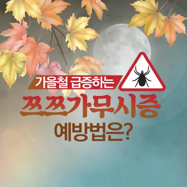 [카드뉴스] 가을철 급증하는 '쯔쯔가무시증' 예방법은?