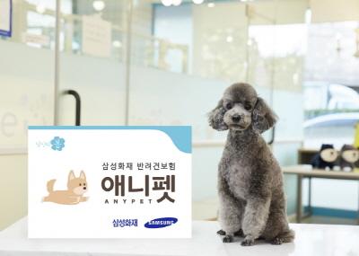 서울시- 삼성화재, 유기견 입양 시 1년간 보험 지원