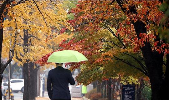 [내일날씨] 남부지방·제주 가을비…주말까지 이어질 듯