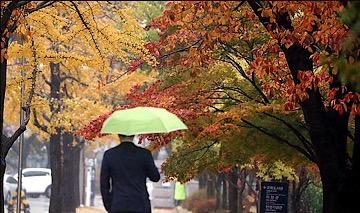 [내일날씨] 흐리고 곳곳 비…낮 기온 뚝 떨어져