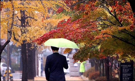 [내일날씨] 서리 내린다는 상강…남부에 '추적추적' 가을비