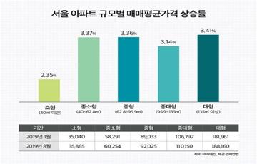 '똘똘한 한채' 붐에 중대형 아파트 풍선효과…소형보다 가격 상승 커
