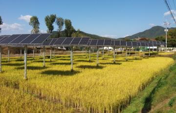 종합에너지기업 꿈꾸는 한수원…성과는?