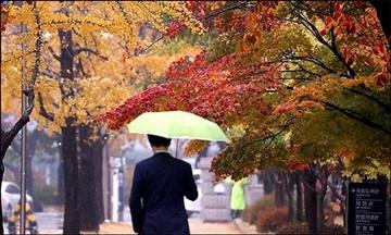 [내일날씨] 전국 구름 많고 남부지방 비…미세먼지는 '보통'