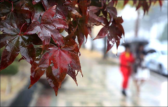 [오늘날씨] 짙은 안개 조심…낮 기온 다소 올라