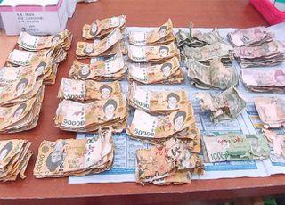 지난해 폐기 화폐 4.3조…지폐만 쌓아도 에베레스트산 7배