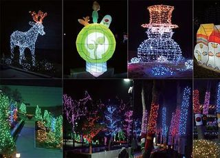 중부발전, 겨울철 문화예술 행사 '빛의 정원' 개최