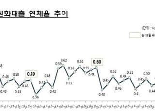 11월 말 국내은행 원화대출 연체율 0.48%…두 달째 상승