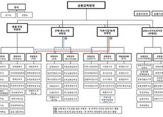 금감원 조직개편 단행…2배 늘린 금소처로 '금융소비자보호' 전력