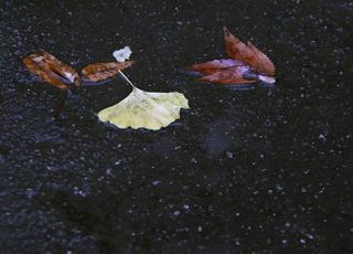 [내일 날씨] 전국 흐리고 남부 지방 곳곳에 비 소식