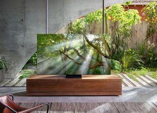 삼성전자, 가전·TV 프리미엄화로 이익 지분율 확대 '시동'