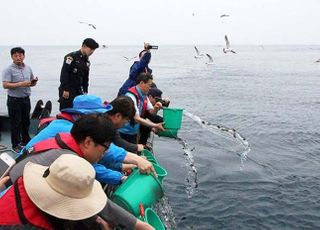 수산자원관리 강화…어업규제완화 시범사업 2차 공모