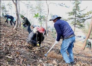 """산림청 """"올해 남산면적의 77배만큼 나무를 심겠다"""""""