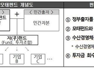 올해 300억원 규모 '수산벤처창업펀드' 조성…수산경영체 집중투자