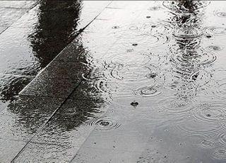 [오늘날씨] '낮 최고 16도' 포근한 날씨 속 저녁 빗방울…미세먼지 '보통'