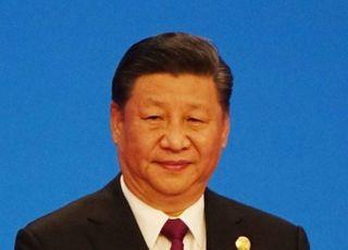 시진핑 4월 일본 국빈 방문 '연기'...한국 방문도 어려울 듯