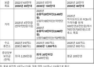 """""""中, 2030년 수소차 100만대 초과 전망…韓 기업 선점 필요"""""""