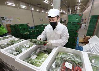 급식중단 친환경농산물, 3월 70억원 피해…궁여지책 할인판매