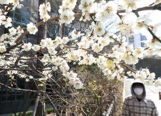 [오늘 날씨] 꽃샘추위로 강풍 불고 쌀쌀…강원 한파주의보