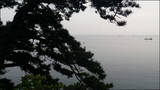 서복전시관에서 바라 본 서귀포 앞 바다.ⓒ조남대