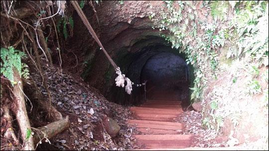 태평양전쟁 막바지에 한국인을 강제동원하여 만들어 놓은 가마오름 동굴진지 입구.ⓒ조남대