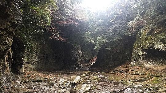 양치식물과 상록수 및 선사시대의 삶의 터전을 볼 수 있어 천연기념물 제377호로 지정된 안덕계곡.ⓒ조남대
