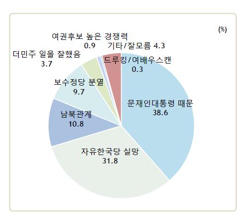 국민 38.6%는 더불어민주당이 6·13 지방선거에서 압도적인 승리를 거둔 배경으로 문재인 대통령의 높은 지지율을 꼽았다. ⓒ알앤써치