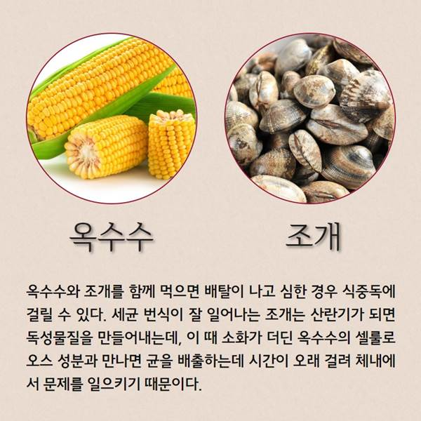ⓒ제작 = 데일리안 이지희 & 이미지 출처 = 게티이미지뱅크