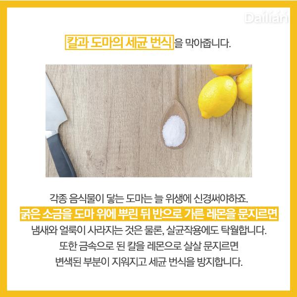 ⓒ제작 = 데일리안 이지희, 박진희 디자이너