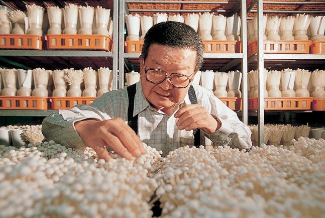 지난 1995년 은퇴한 구자경 LG그룹 명예회장이 버섯 재배를 연구하고 있다.ⓒLG
