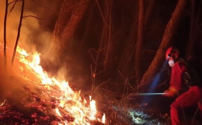 울산시 울주군 간월산에서 산불이 발생해 5시간30분 만에 꺼졌다. ⓒ연합뉴스