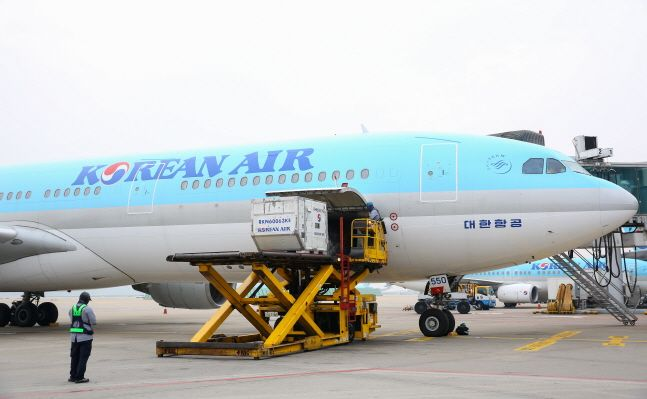 여객기를 화물기로 변경한 대한항공 A330.ⓒ대한항공